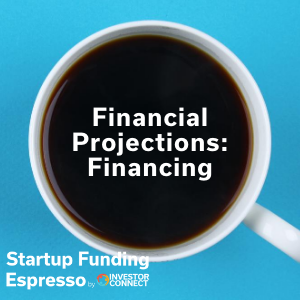 Financial Projections: Financing