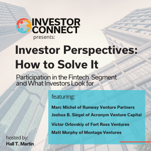 Investor Perspectives – How to Solve the Fintech Problem: Participation in the Fintech Segment and What Investors Look for