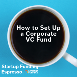 How to Set Up a Corporate VC Fund