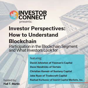 Investor Perspectives – How to Understand Blockchain: Participation in the Blockchain Segment and What Investors Look for