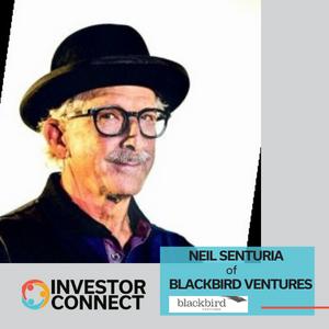 Investor Connect: Neil Senturia of Blackbird Ventures